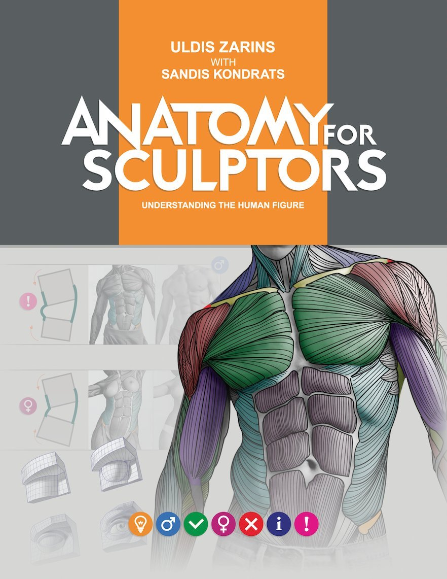 Download: Anatomy for Sculptors Understanding the Human, Edition ...