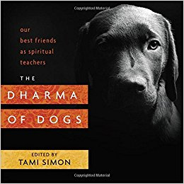 Download: The Dharma of Dogs: Our Best Friends as Spiritual Teachers