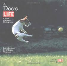 Download: A Dog's Life: A Book of Classic Photographs
