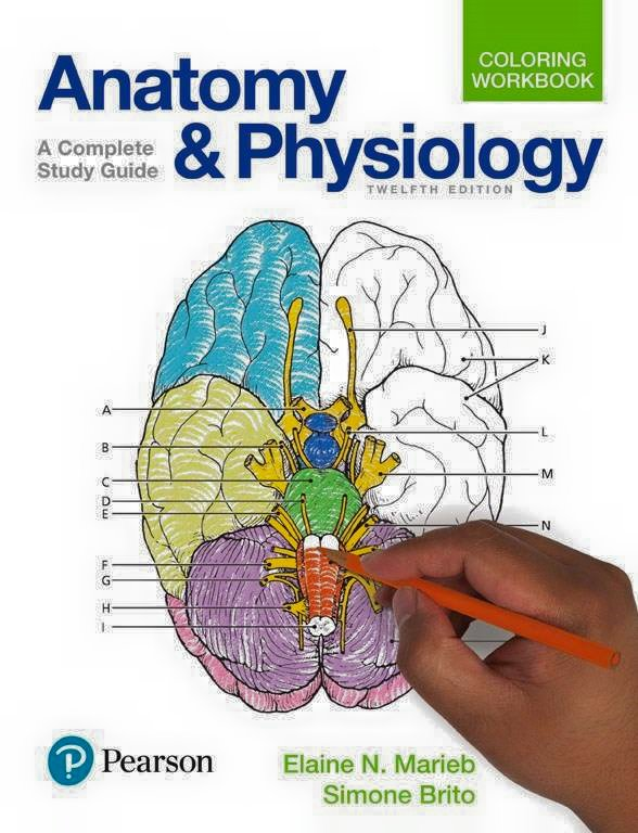 Anatomy-and-Physiology Download Anatomy and Physiology (2018)