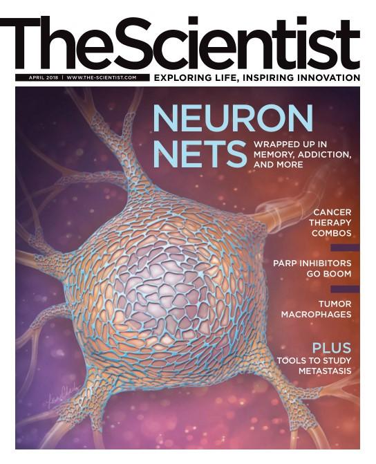 download The Scientist - April 2018