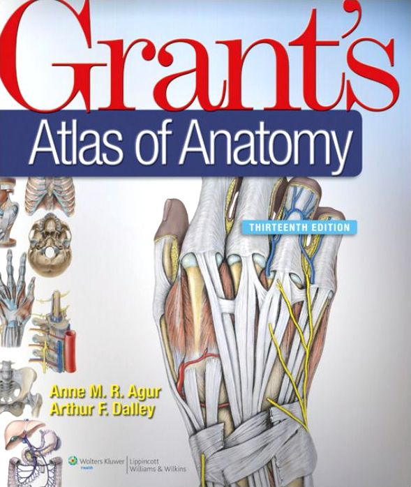 Grants-Atlas-of-Anatomy-13th-Edition Grant's Atlas of Anatomy, 13th Edition