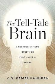 The Tell-Tale Brain A Neuroscientist's Quest for What Makes Us Human