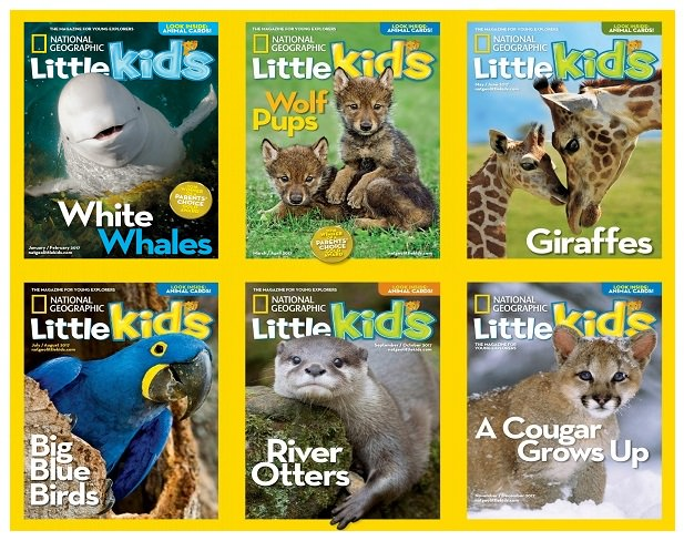 download National Geographic Kids USA - 2017 Full Year Issues Collection