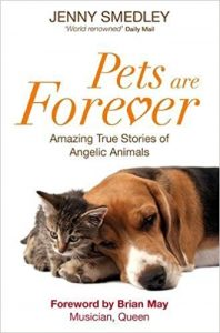 Pets Are Forever Amazing True Stories of Angelic Animals