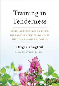 Training in Tenderness Buddhist Teachings on Tsewa, the Radical Openness of Heart That Can Change the World