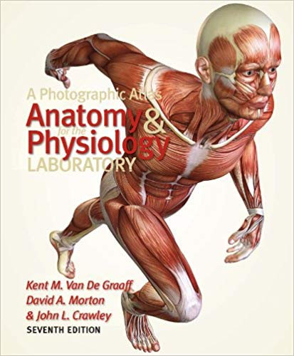 A-Photographic-Atlas-for-the-Anatomy-and-Physiology-Laboratory A Photographic Atlas for the Anatomy and Physiology Laboratory, 7th Edition