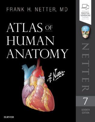 Atlas-of-Human-Anatomy-7th-ed-2019 Netter Atlas of Human Anatomy, 7th edition 2019