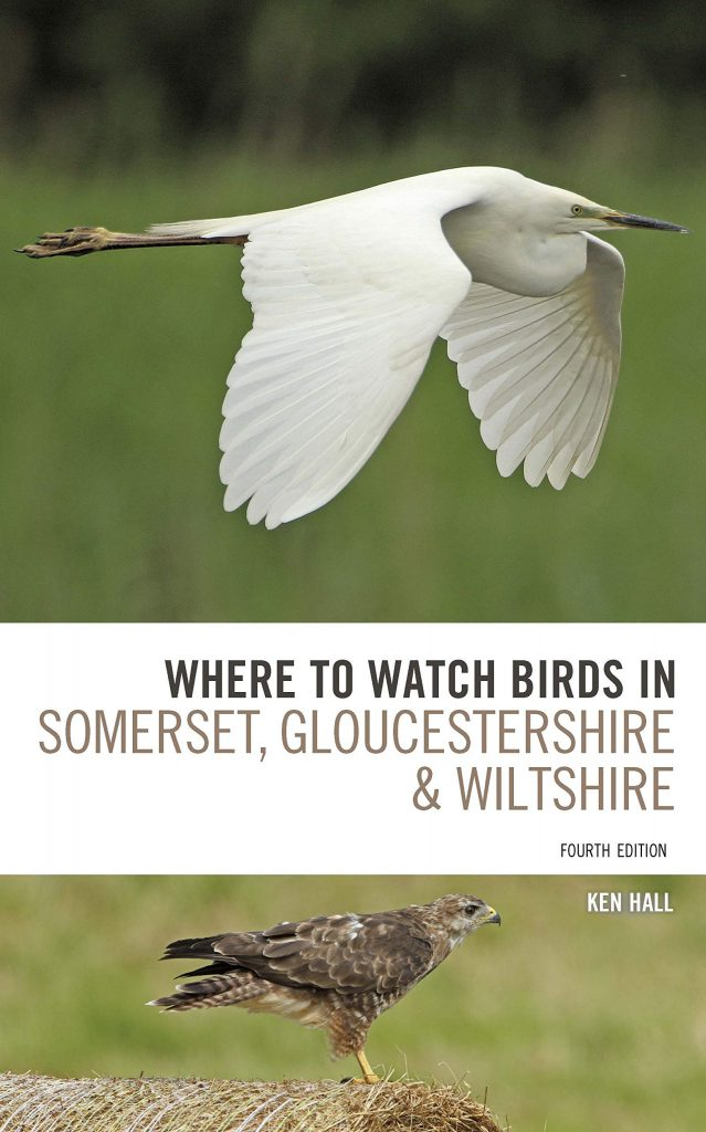 Where To Watch Birds in Somerset, Gloucestershire and Wiltshire, 4th Edition
