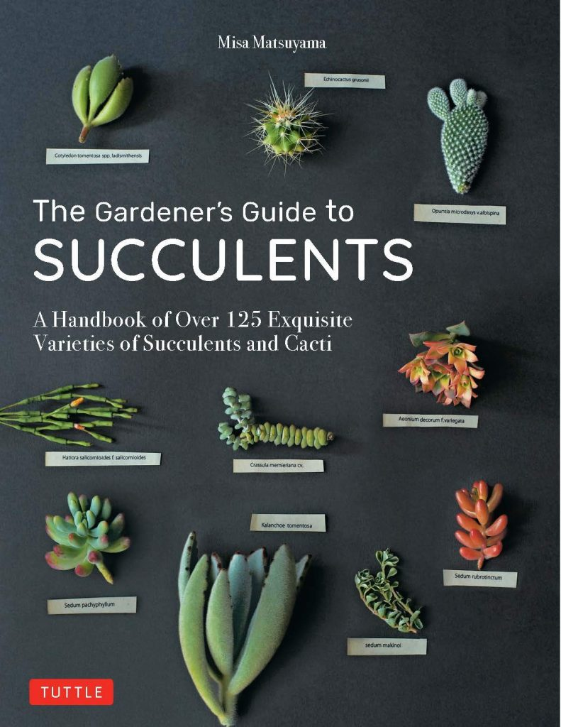 The-Gardeners-Guide-to-Succulents-A-Handbook-of-Over-125-Exquisite-Varieties-of-Succulents-and-Cacti-1-791x1024 The Gardener's Guide to Succulents: A Handbook of Over 125 Exquisite Varieties of Succulents and Cacti (2020)