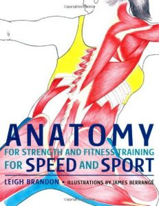 Anatomy-for-Strength-and-Fitness-Training-for-Speed-and-Sport-231x300 Anatomy for Strength and Fitness Training for Speed and Sport